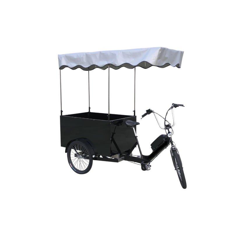 Cargobike-Trasporto-Merci-Cassone